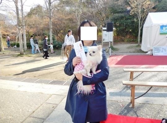 タイトルなし (3).jpg