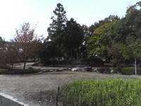 20081102_0013.JPG