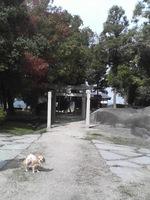 20081102_0017.JPG