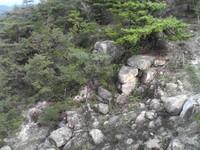 20081102_0046.JPG