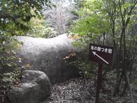 20081102_0110.JPG