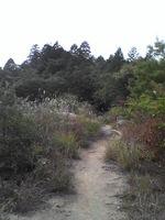 20081102_0111.JPG