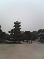 20081103_0133.JPG