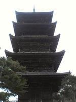 20081103_0137.JPG