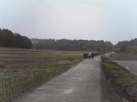 20081103_0142.JPG