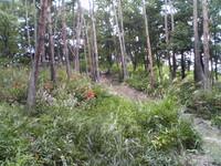 20081103_0159.JPG