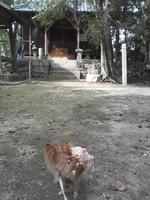 20081103_0179.JPG