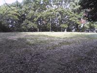 20081103_0185.JPG