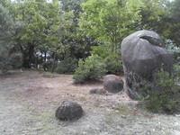 20081103_0216.JPG