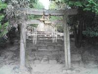 20081103_0220.JPG
