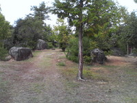 20081103_0227.JPG
