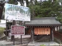 20081103_0250.JPG