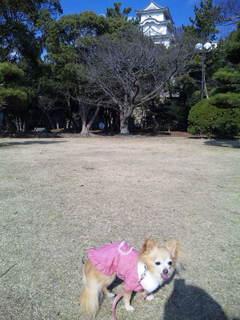 20110109_006.JPG