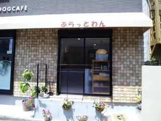 20120818_075.JPG